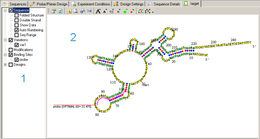 Pcr Primer Design Tool Visual Omp Dna Software